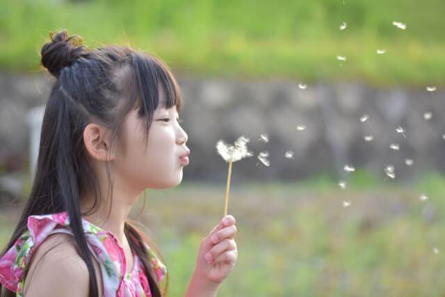 タンポポの綿毛を飛ばす女の子