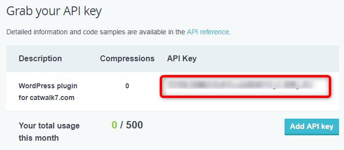 API Keyが表示されます。