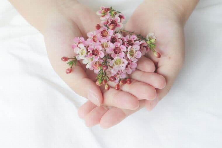 手のひらに花 元画像